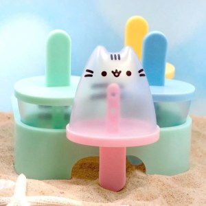 Pusheen Popsicle Mold