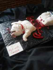 Uga Roadkill Cake