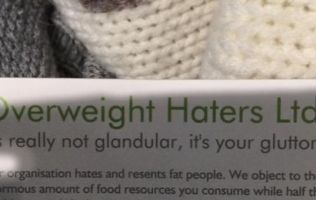 Overweight Haters