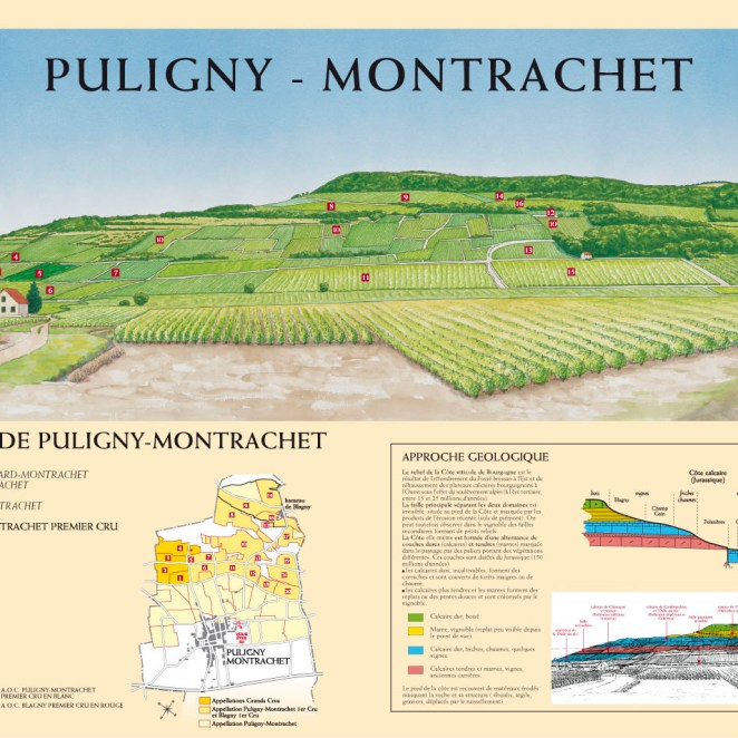Table de lecture Viticulture (21)