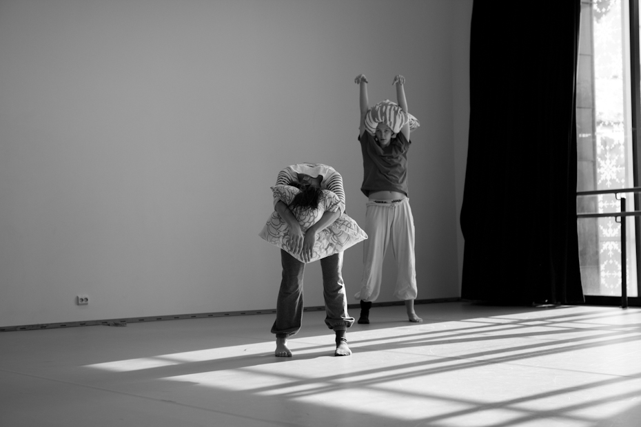 dansenord-1