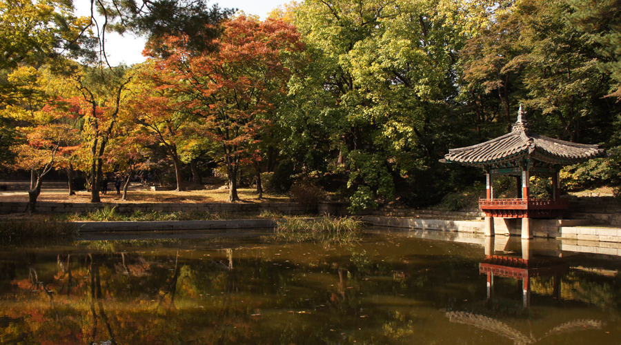 2014-seoul-korea-changdeokgung-palace-secret-garden-biwon-13