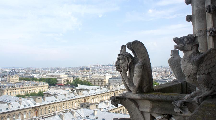 2014-notre-dame-paris-france-37