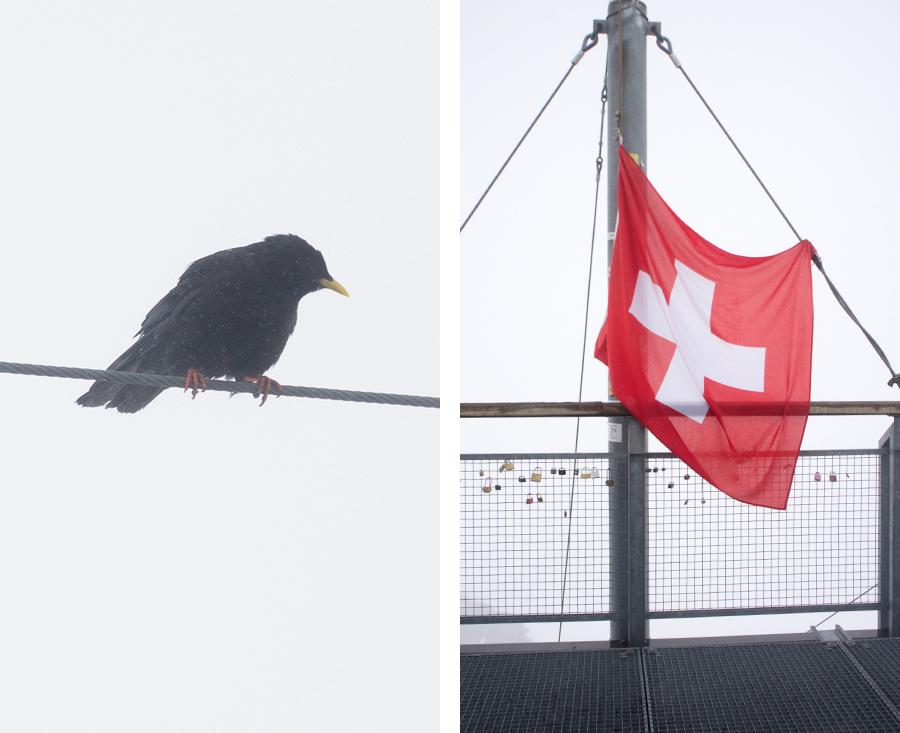 2014-silentlyfree-interlaken-switzerland-jung-frau-05