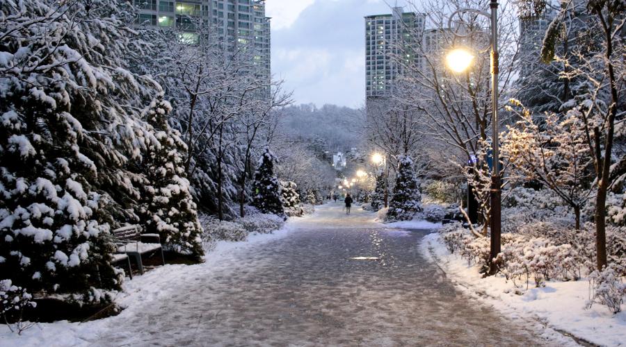 silentlyfree-winter-wonderland-south-korea-01