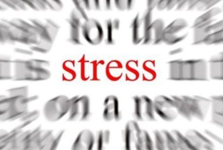 Alimentos que diminuem o estresse