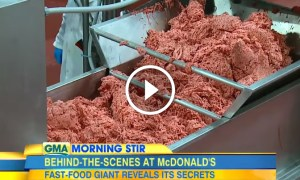"McDonald's FINALLY Admits What's Inside Their So-Called ""Burgers"". Yuck!"