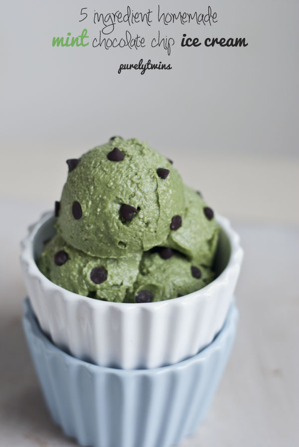 raw-mint-chocolate-chip-avocado-ice-cream