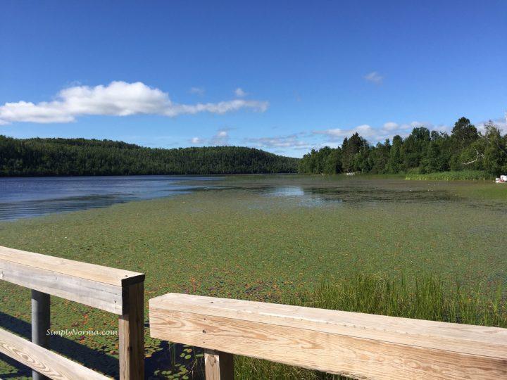 Lax Lake, MN