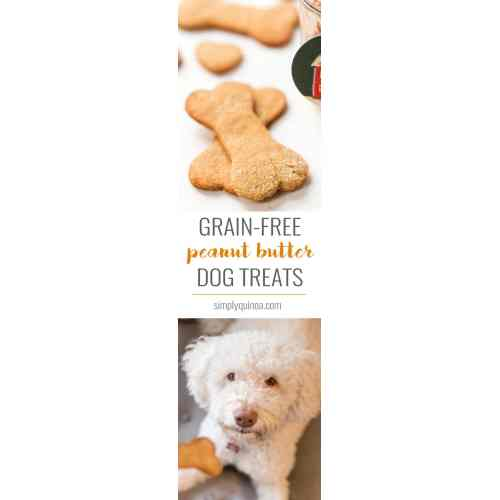 Medium Crop Of Homemade Grain Free Dog Treats