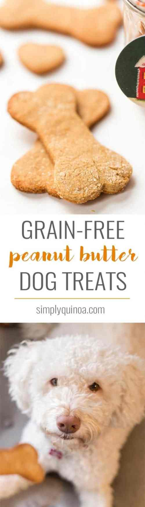 Medium Of Homemade Grain Free Dog Treats