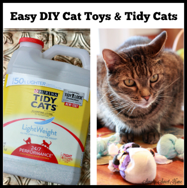 Easy DIY Cat Toys & Tidy Cats Lightweight