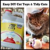 Easy DIY Cat Toys and Tidy Cats