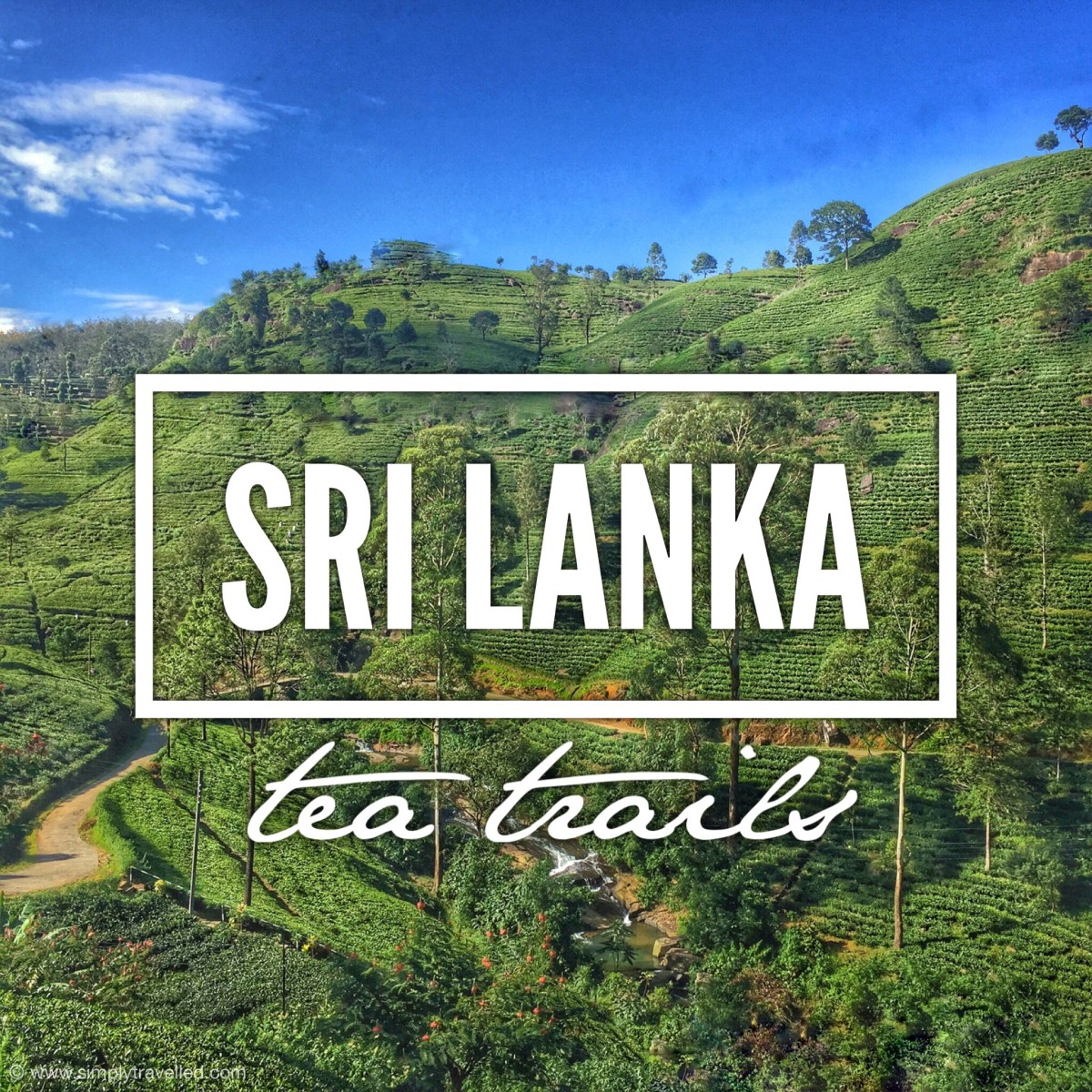 Tea Trails Sri Lanka
