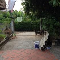www.singapbyart.com-ninhbinh-homestay-ethnictravel.jpg