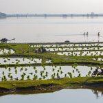 Viaje fotográfico a Myanmar (Birmania): Pescando en el lago Taungtanar (2ª parte)