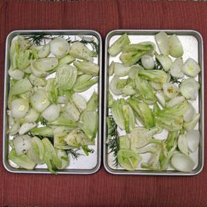 roasting fennel