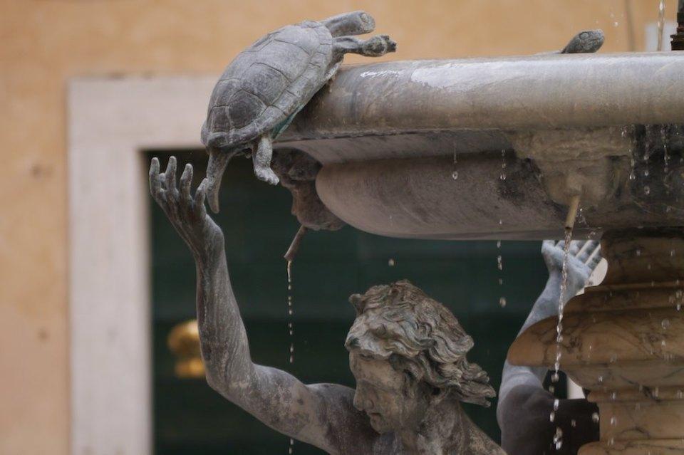 Detail des Schildkröten-Brunnens in Rom. Eine Schildkröte wird in den Brunnen geschoben. Links tröpfelndes Wasser