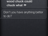 As if quality time with Siri wasn't important enough….