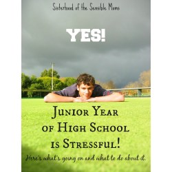 Lummy Jr Year School Jr Year School School Musical Quotes About Graduating School Musical Quotes Love