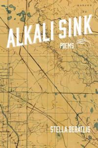 Alkali Sink Cover Image