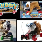 Buddy Skate Dog – 2012