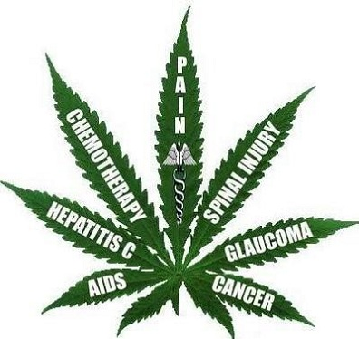 Cannabis Oil For Sale For Cancer