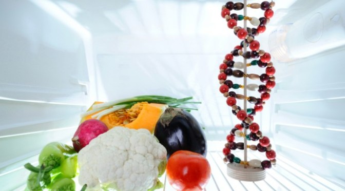 gmo genes transfer to humans