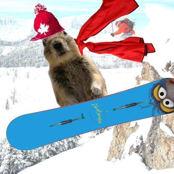 Banff Squirrel Snowboard Bomb