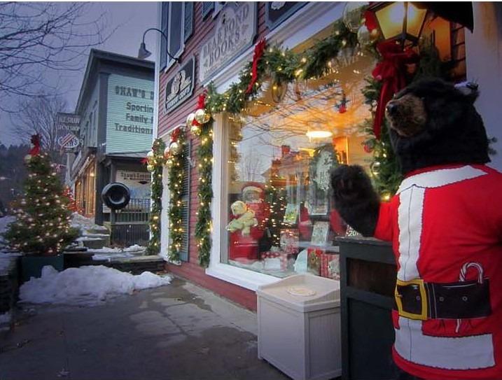 Stowe's Christmas Teddy.