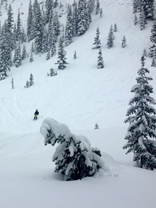 CB's Extremes were skiing great all weekend thanks to seven feet of snow in the last two weeks.