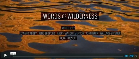 10-8-14_wilderness