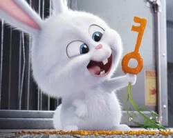 'The Secret Life of Pets' – New footage released for Easter