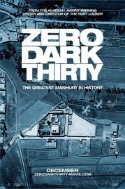 0-dark-thirty-poster-2