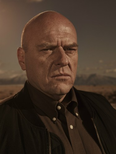 Breaking Bad Season 5 - Hank