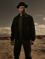 Breaking Bad Season 5 - Walt 2