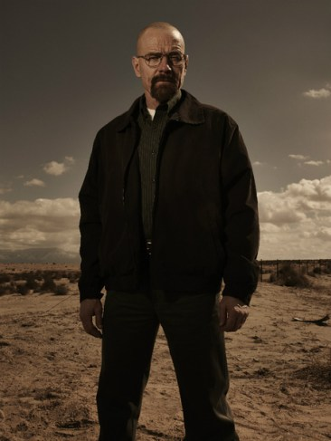 Breaking Bad Season 5 - Walt