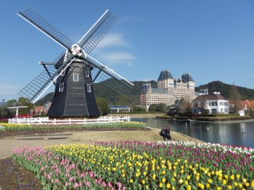 Huis-Ten-Bosch-Windmill-Tulips-1-3x4-by-Joshua-Meyer