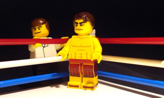 Lego The Fighter