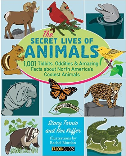 Secret_Lives_of_Animals_Book