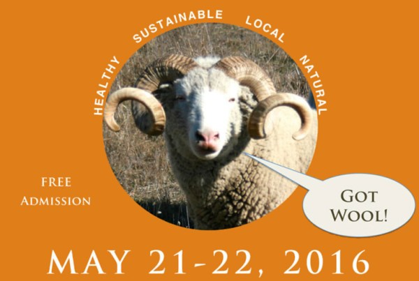 2016 3rd Annual Wool Festival at Casari Ranch in Point Arena