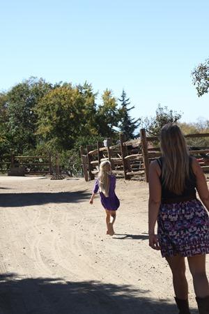 Riley's Farm apple picking walk