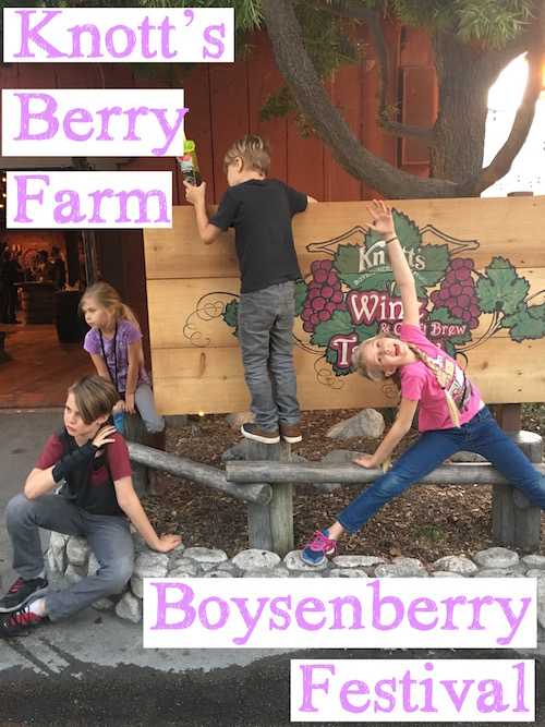 Knotts Berry Farm Boysenberry Festival