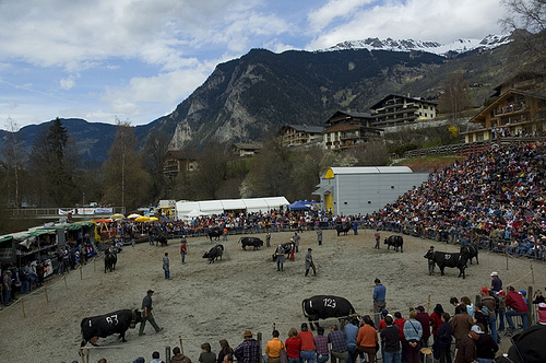 Festivals and other things at switzerland