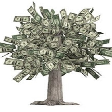 The Cash Flow Money Tree