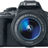 Best Entry Level DSLR Cameras 2014