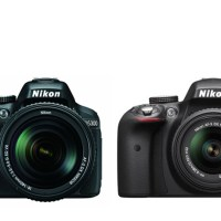 Nikon D5300 vs D3300 - Best Nikon Entry Level DSLR