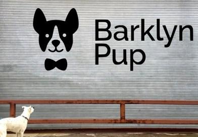 Barklyn in Brooklyn