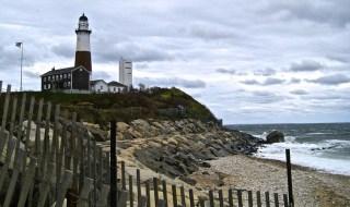 Congressman Zeldin Coastal Clean Up Project
