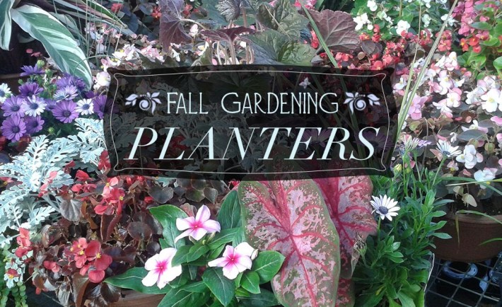 fall_planters